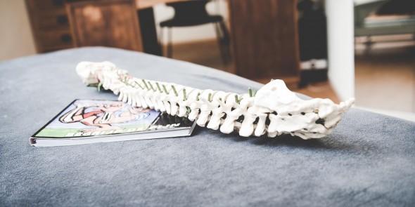 Fysiotherapie Driebergen Manuele therapie Chronische pijn